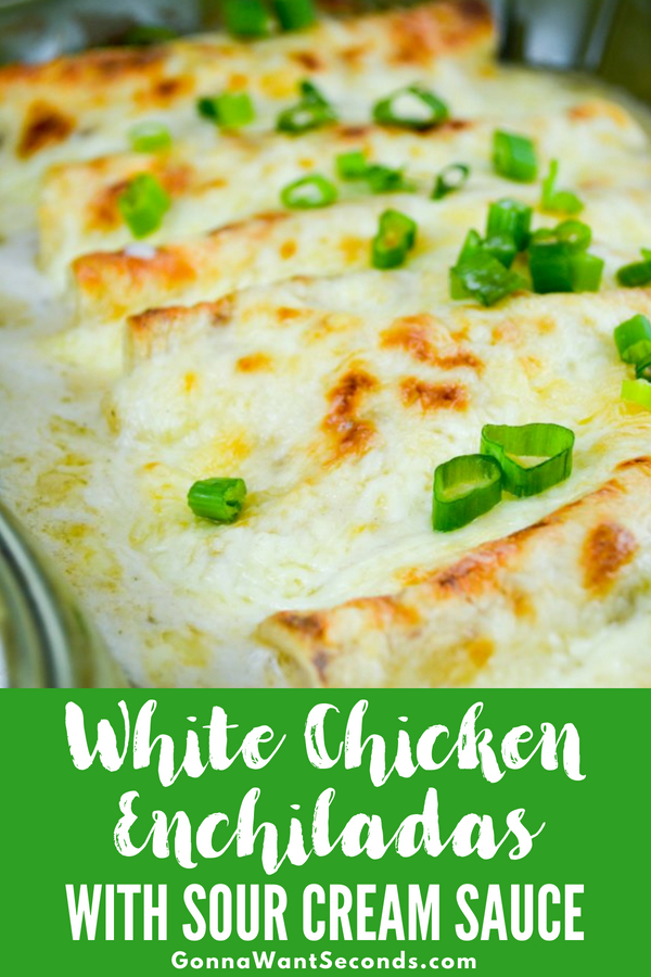 Amazing White Chicken Enchiladas with Homemade Sour Cream White Sauce--No Soup. It is easy to make and off the charts delicious! #Best #Chicken #Enchiladas #Recipe #Easy #WithWhiteSauce #Casserole #Creamy #Cheesy #SourCream #Bake #SideDishes #Quick #Homemade #Simple #WithFilling #JackCheese #Dinner #Weeknight #Meals