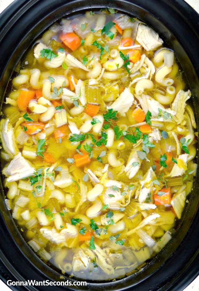 Crock Pot Chicken Noodle Soup in a crockpot