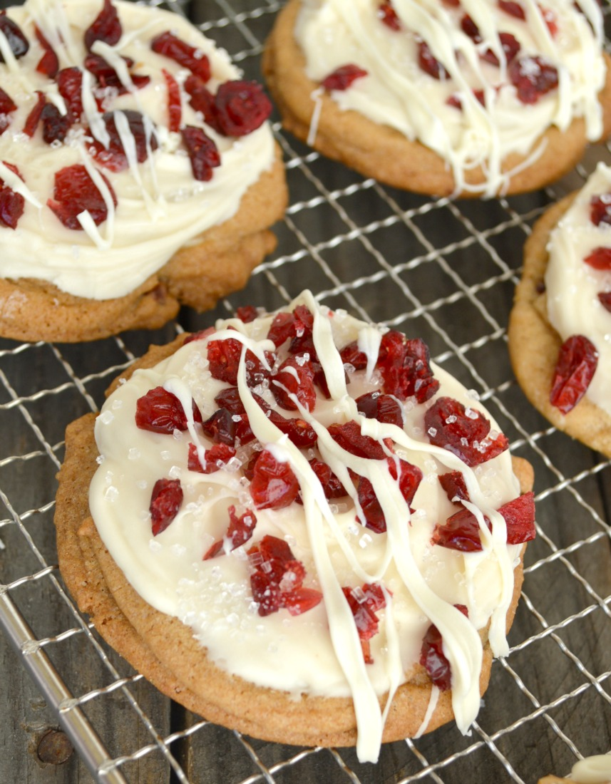 Cranberry Bliss Cookies