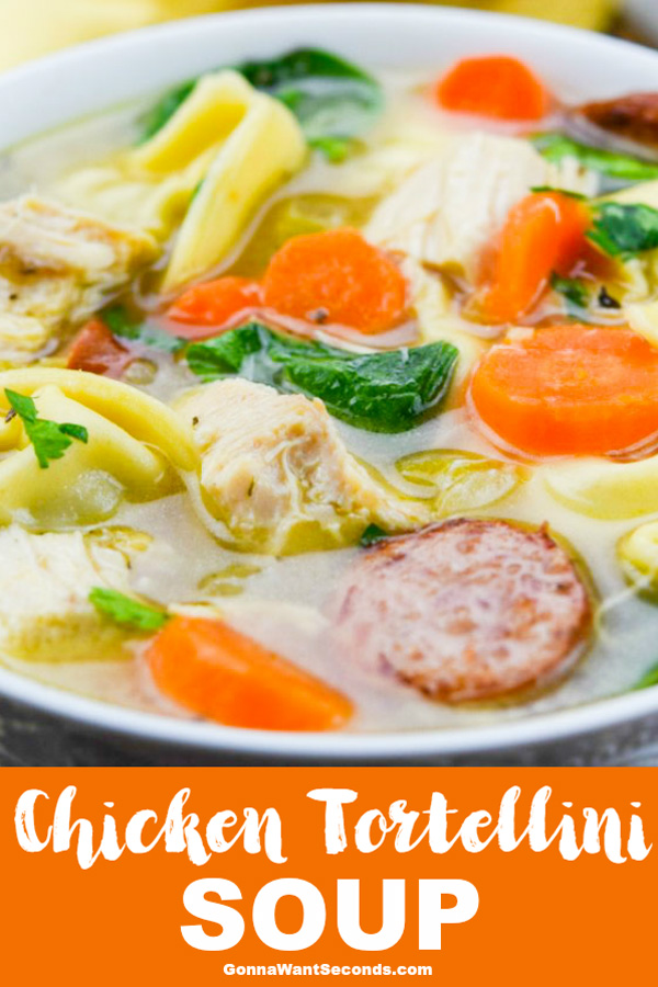 Our Chicken Tortellini Soup is loaded with chicken, tortellini, and tender vegetables. It's soothing, delicious and filled with some tasty surprise flavors. #Chicken #Tortellini #Soup #Garlic #Healthy #Stovetop #Spinach #Italian #Recipes #Homamade #Vegetables #Light #ComfortFoods #WithSausage #Kielbasa #Familes #Pasta #Noodles #Bowls #Onions #Lunches #ColdWeather #ChickenStock #Celery #Carrots
