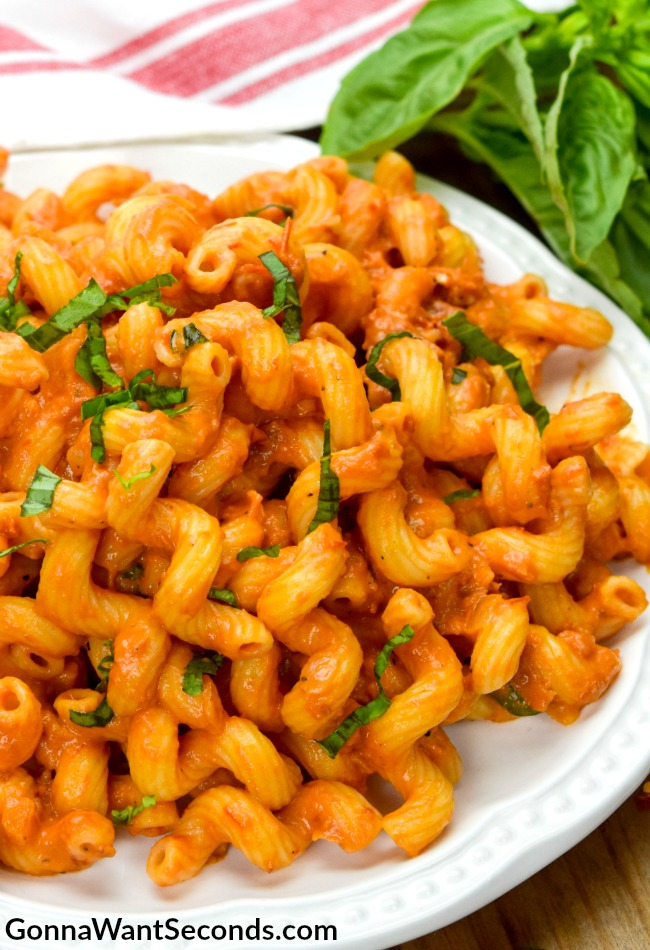 Cavatappi with Creamy Tomato Sauce - Gonna Want Seconds
