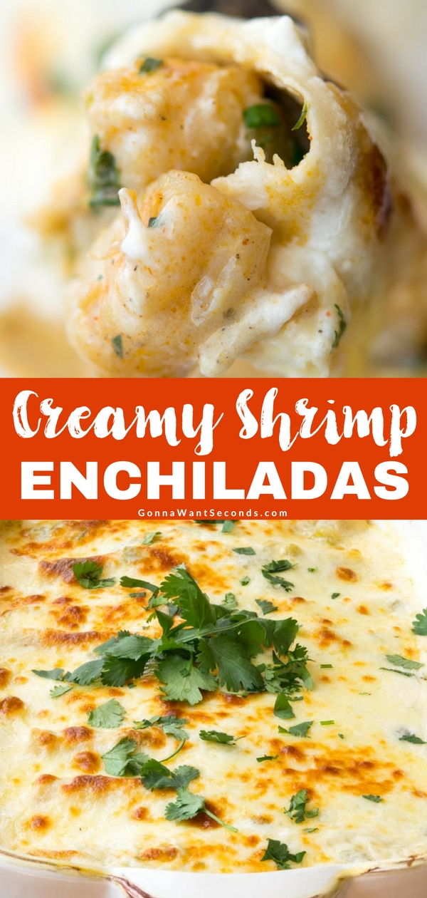 Succulent shellfish and a rich, creamy sauce make these Shrimp Enchiladas truly something special – a Tex-Mex staple transformed into good old-fashioned comfort food. #Creamy #Shrimp #Enchiladas #Recipes #CornTortillas #Casserole #Best #White #Cheesy #SourCream #Seafood #TexMex #ComfortFood #OldFashioned #Dinner #FlourTortillas #Spicy #Suizas #Jalapeno #MontereyJack #Crab