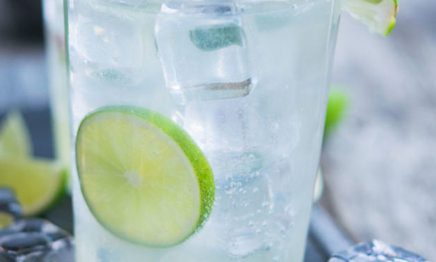 Lime Rickey Recipe – Artisan Mocktail