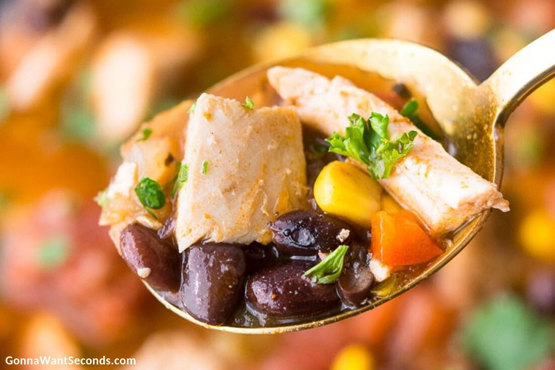 A spoonful of Mexican Chicken Soup