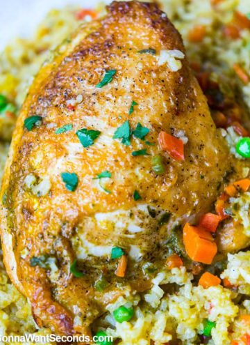 Arroz Con Pollo Peruano, close up