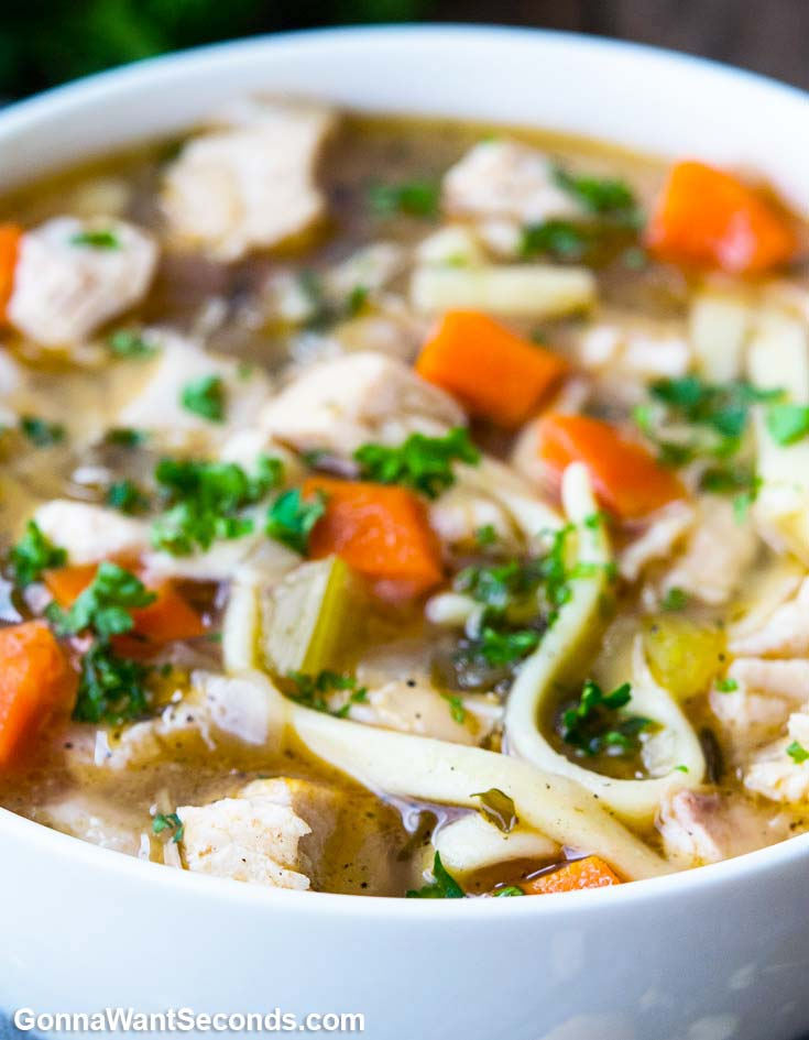 Chicken Noodle Soup in a white bowl, close up