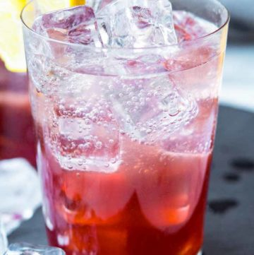 A glass of Sloe Gin Fizz garnished with lemon wheel