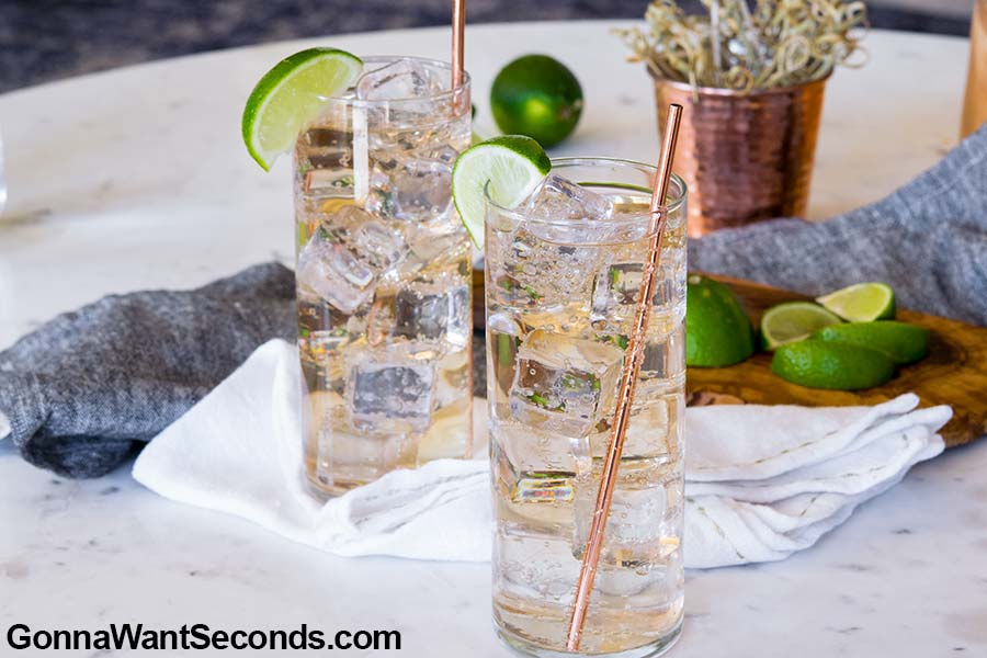 Two glasses of Gin and Ginger Ale with lime wedges