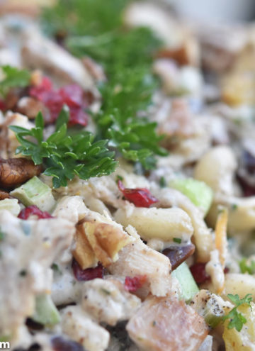 Chicken Macaroni Salad, close up