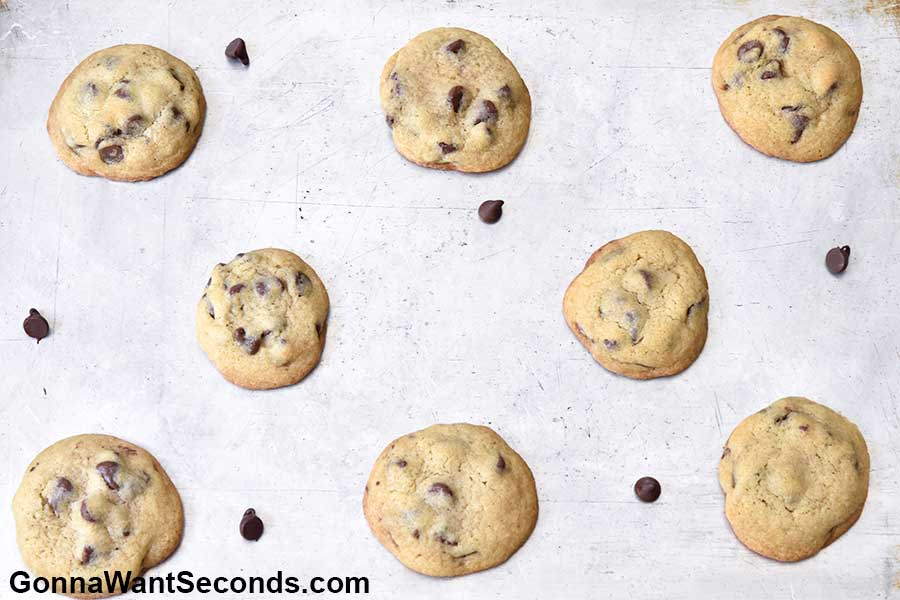 best chocolate chip cookies on a baking pan