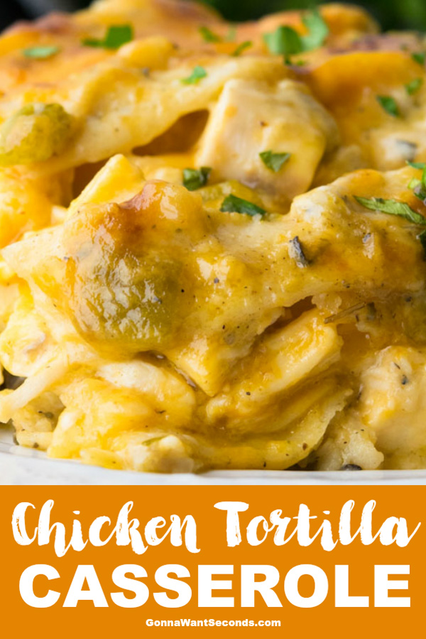 Always a hearty family favorite, Chicken Tortilla Casserole makes the most of convenient ingredients while packing tons of rich flavor in every creamy bite! #Chicken #Tortilla #Casserole #Easy #Recipes #Healthy #Layered #GreenChili #Creamy #Best #Cheesy #Families #ComfortFoods #Ovens #MainDishes #WeeknightMeals #CheeseEnchiladas #Cooking #Night #Cream #Mushroom #Soup #CornTortillas