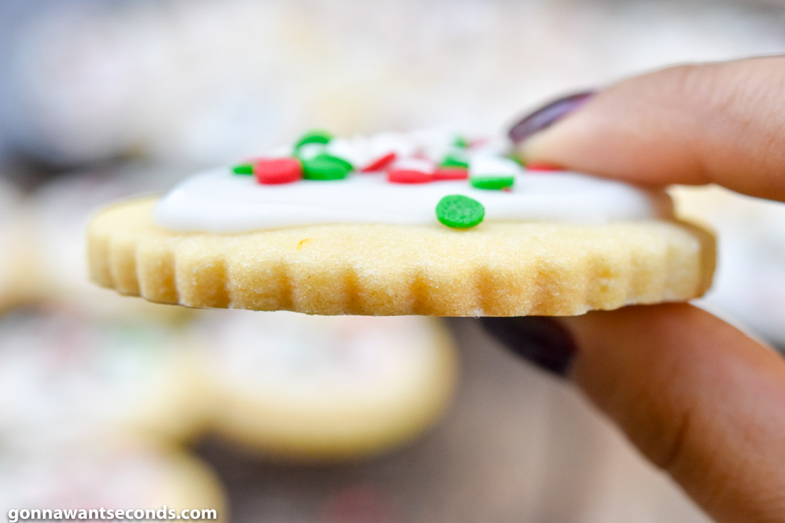 Hand holding Christmas Butter Cookies, close up