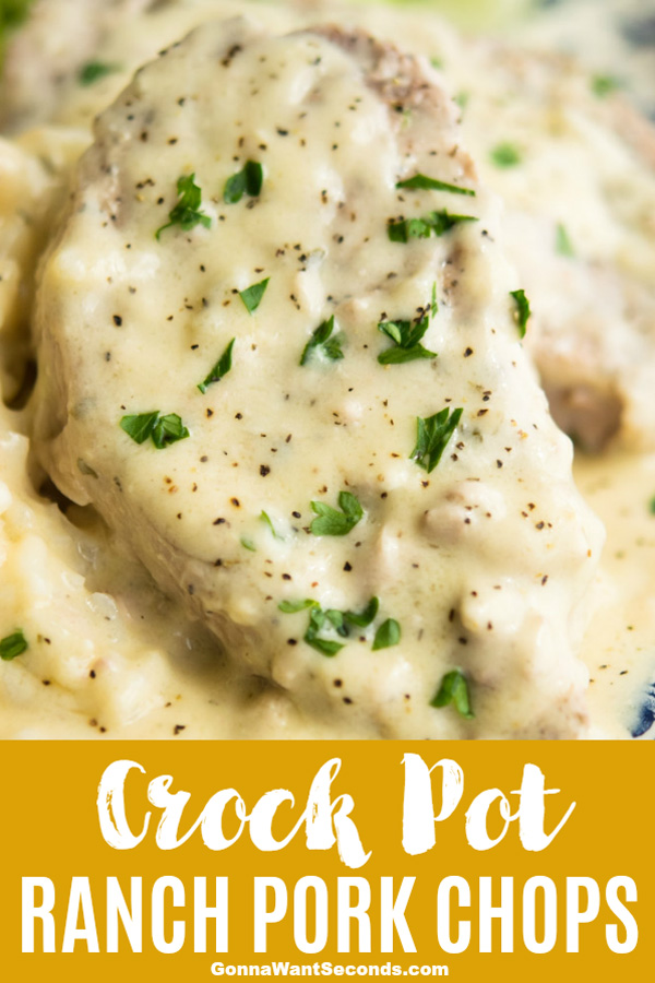 Our Crock Pot Ranch Pork Chops are Super Tender and Juicy then smothered in lotsa creamy gravy that has just the right amount of ranchy zing! #Crockpot #Ranch #PorkChops #CrockPots #WithCreamCheese #Recipes #Families #Dishes #Meat #ComfortFoods #CreamOfMushrooms #Rice #Fun #Simple #MainCourses #Easy #Dinner #Weeknight #Boneless #WhiteWine #Creamy #Gravy