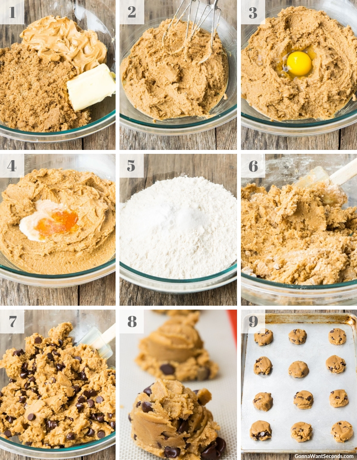 Step By Step How To Make Peanut Butter Chocolate Chip Cookies