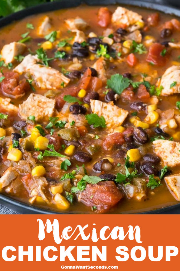 Mexican Chicken Soup brims with tender chicken, fresh vegetables, and southern spices. The unique cilantro, cheese, and chip topping seals the deal! #gonnawantseconds #mexicanchickensoup #mexicansoup #chickensoup #mexicanfood #souprecipes #comfortfood