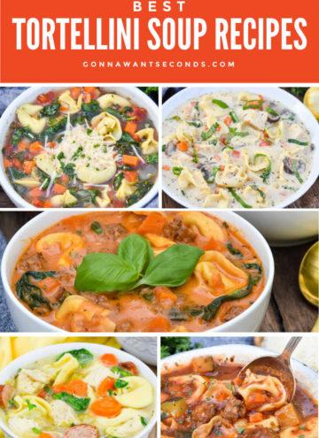 Tortellini soup recipes