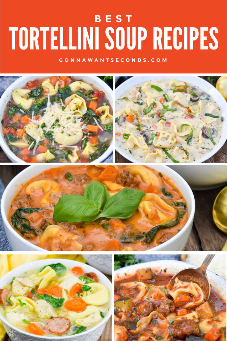 Tortellini soup recipes