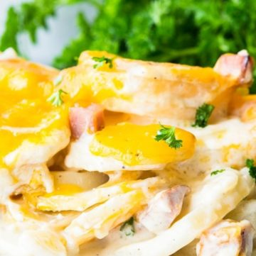 Scalloped Potatoes and Ham on a plate