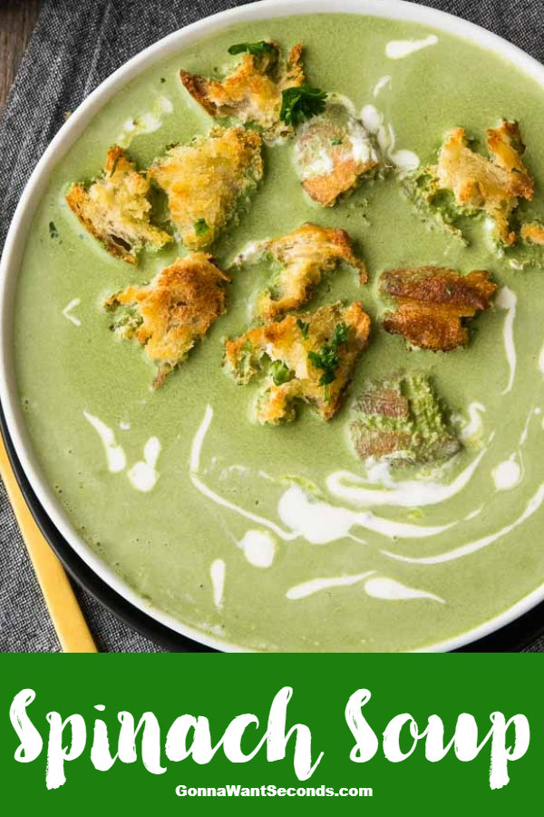 Spinach Soup is so rich and creamy- your family won't mind eating their veggies! Quick to make & hearty enough for a meal, it looks pretty on the table too! #gonnawantseconds #spinachsoup #soups #vegetariansoup #healthysoup #souprecipes #spinachrecipes #vegetarianrecipes #easysoup #easyrecipes